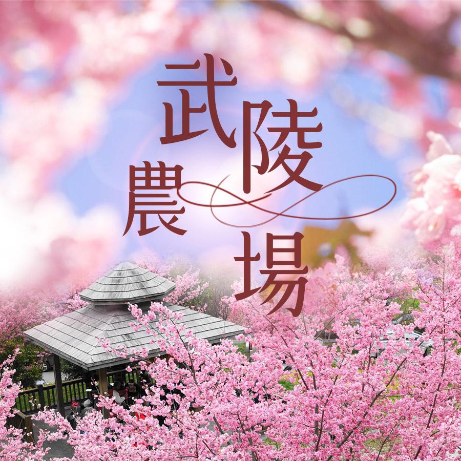 武陵農場  台灣的桃花源