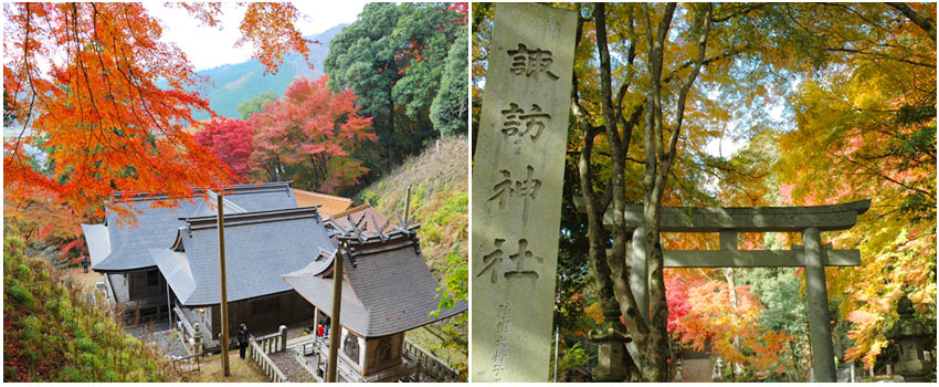 鳥取賞楓私房景點~諏訪神社