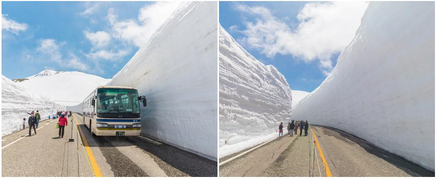 立山雪壁奇景
