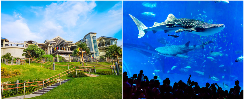 海洋博水族館