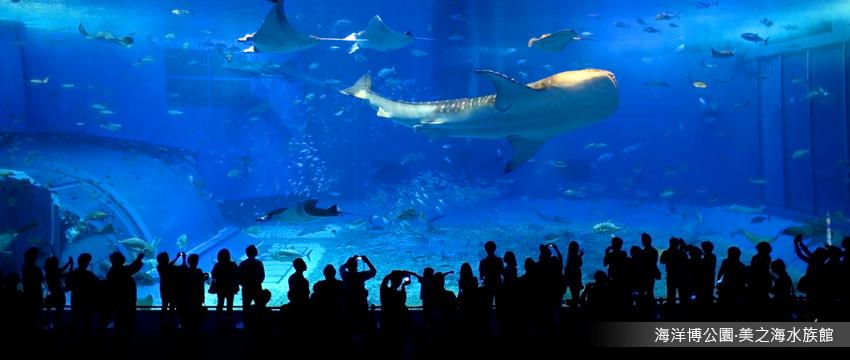 海洋博公園‧美之海水族館