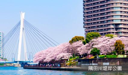 隅田川堤岸公園