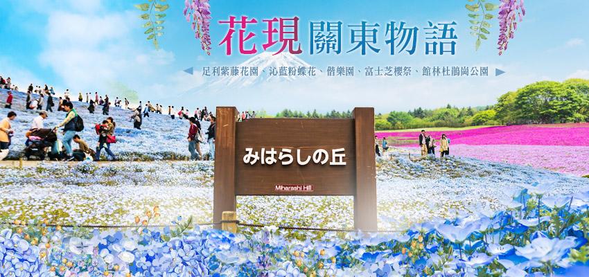 花現關東物語-足利紫藤花園、沁藍粉蝶花、偕樂園、富士芝櫻祭