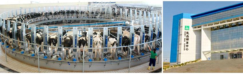 蒙牛工業區