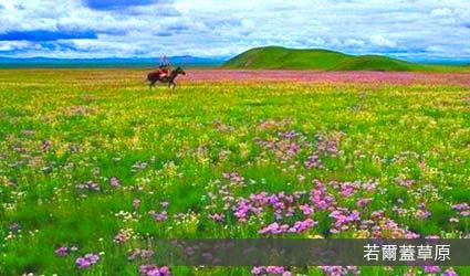 若爾蓋草原