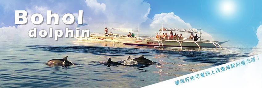 薄荷島~海豚追蹤