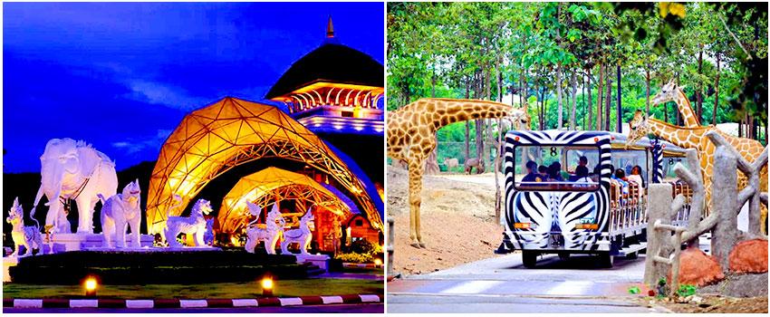 清邁夜間動物園