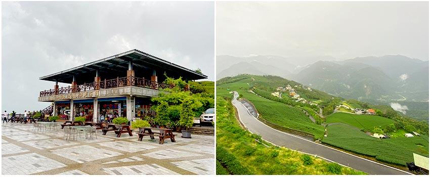 碧湖山觀光茶園