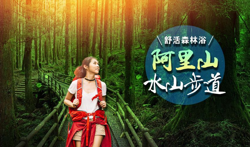 水杉巨木步道banner