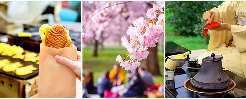 九族櫻花祭活動