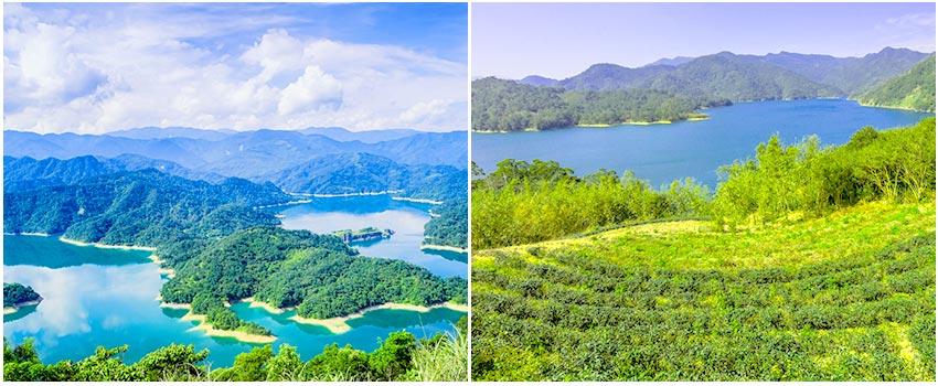 石碇千島湖八卦茶園