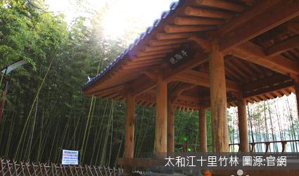 太和江公園─十里竹林