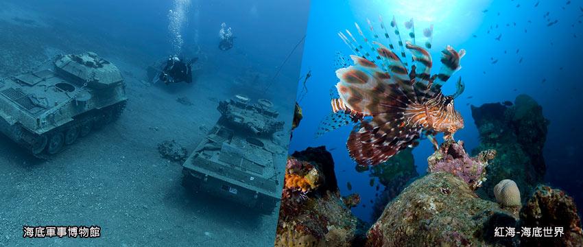亞喀巴-紅海觀光潛水艇