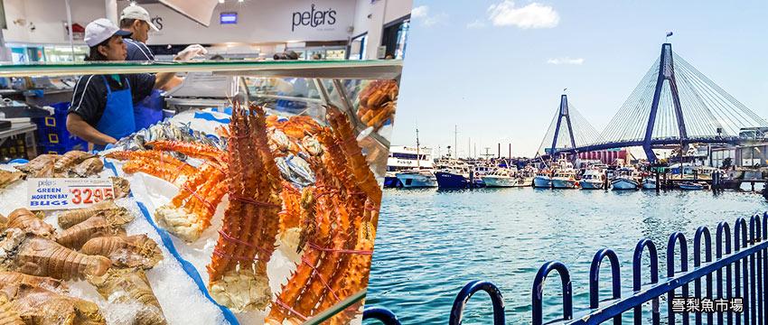 雪梨-雪梨魚市場