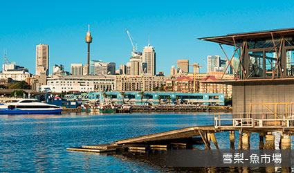 澳洲_雪梨魚市場