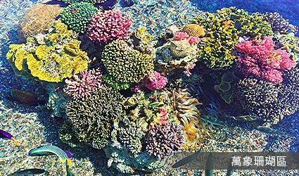 萬象珊瑚區