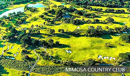 MIMOSA COUNTRY CLUB島