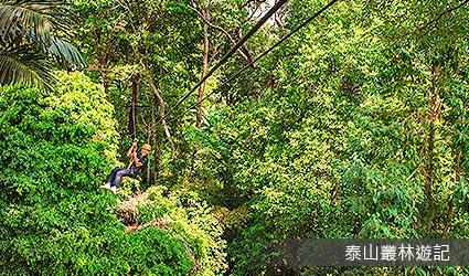 泰山叢林遊記