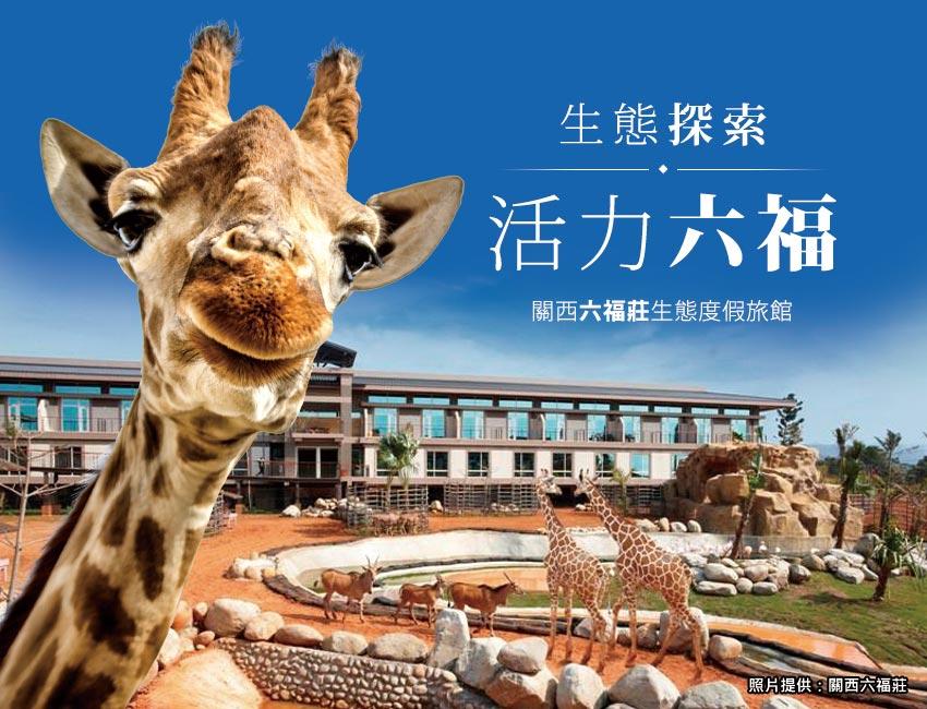生態探索,活力六福,關西六福莊生態度假旅館