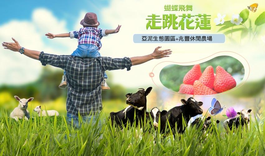 花蓮親子樂遊2日~兆豐休閒農場、採草莓、玩味蕃樂園、章魚燒DIY體驗、亞泥生態園區(含生態導覽)