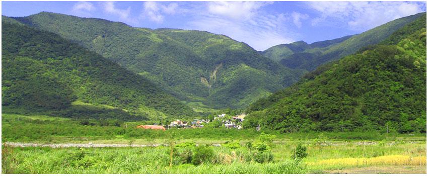 金岳社區巡禮