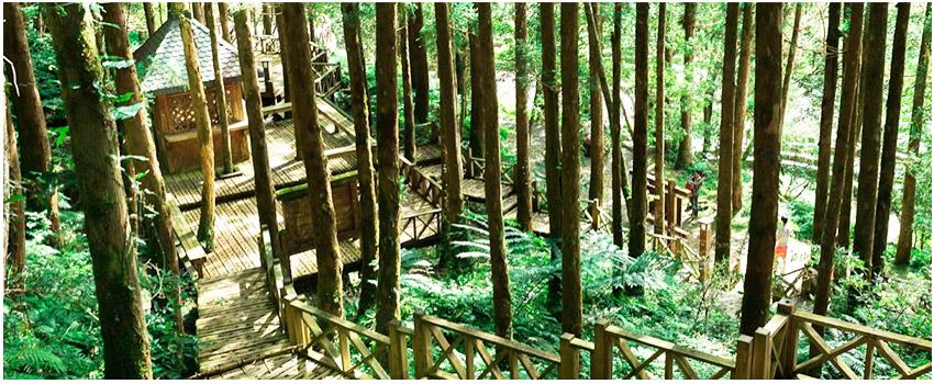 森林童話步道