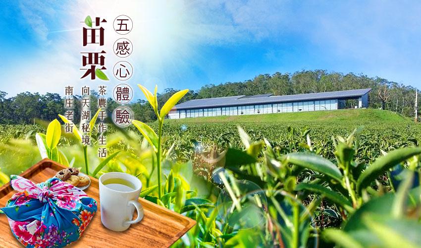 苗栗採茶DIY、向天湖、南庄老街