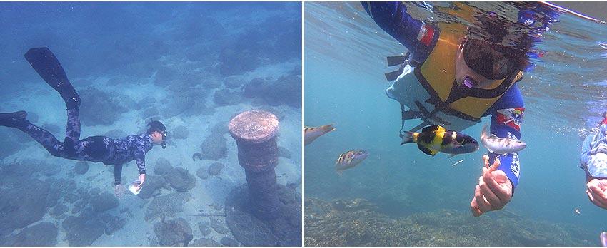 海底郵筒體驗