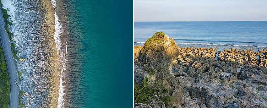 厚石 石珊瑚岩