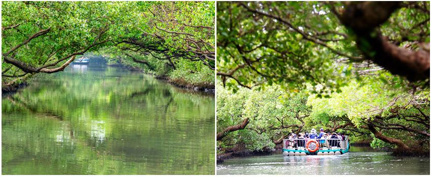 四草湖遊船