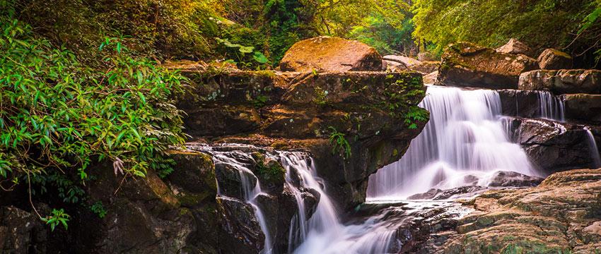 滿月森林國家公園