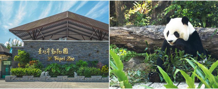 台北市立動物園 Taipei Zoo