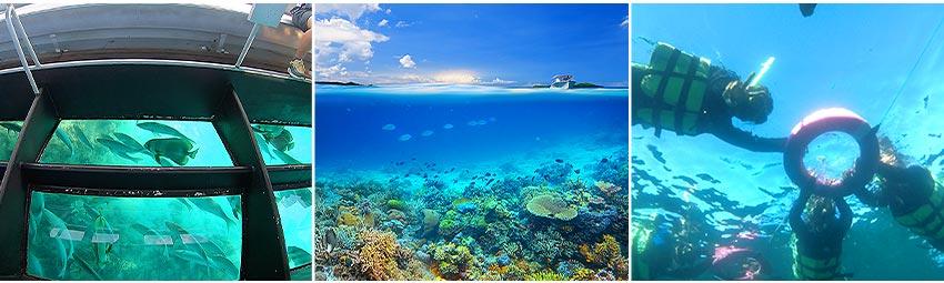 潛水者的天堂
