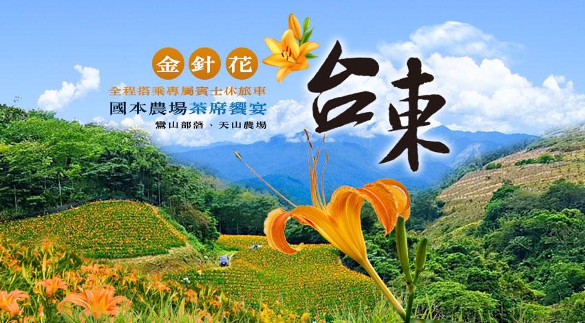 台東金針花4日~國本農場茶席饗宴、鸞山部落、天山農場