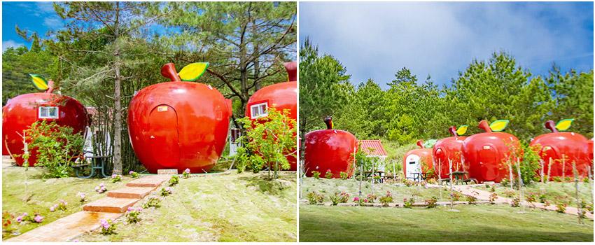 豔紅蘋果屋