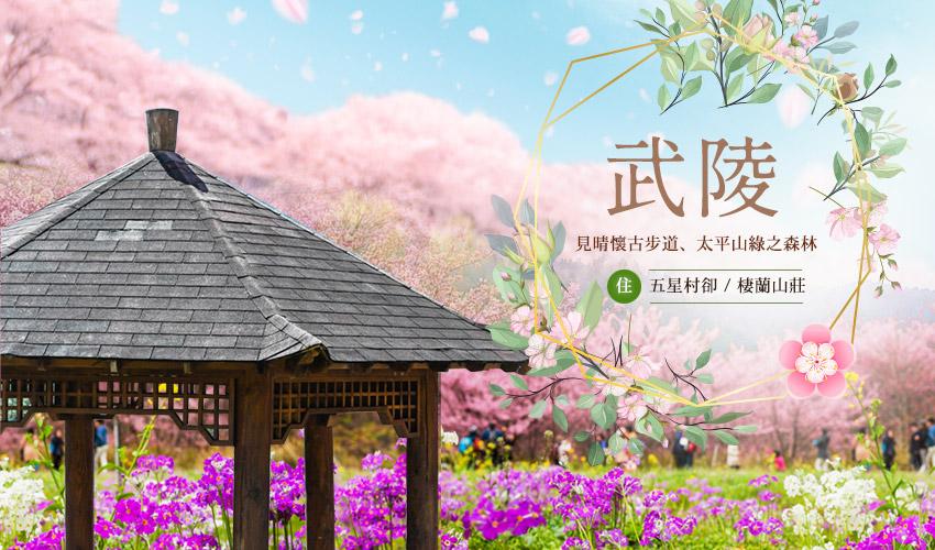 絕美武陵賞花、入住五星村卻、棲蘭山莊3日